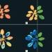 Растенията също имат нервна система?