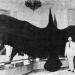 Знаете ли коя е най-голямата птица живяла някога?