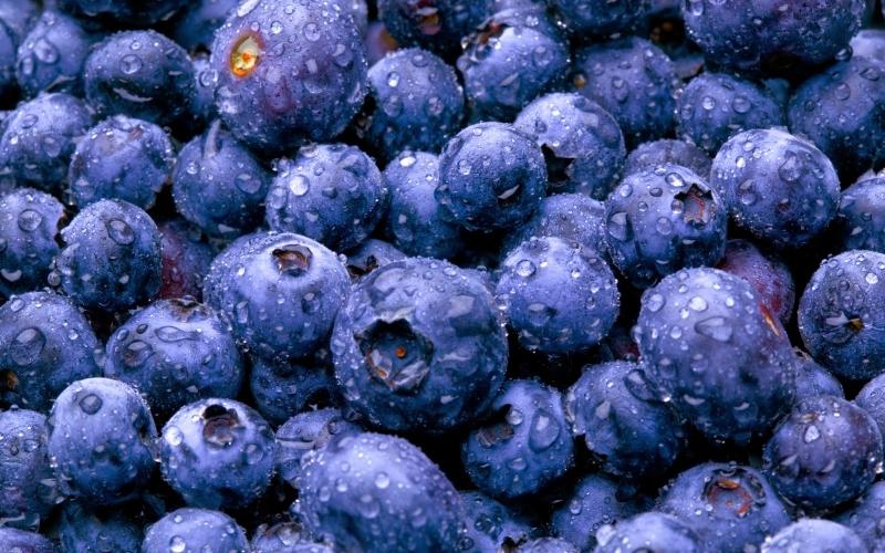 Флавoноидите – антиоксидантите лекуващи всичко?