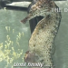 Раждане от мъжко морско конче (видео)