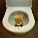 """Пиенето на урина не лекува (видео – """"На кафе"""")!"""