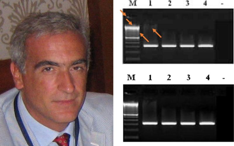 Разкриха фалшифицирани антиГМО изследвания и дисертация от екип на проф. Фредерико Инфасцели