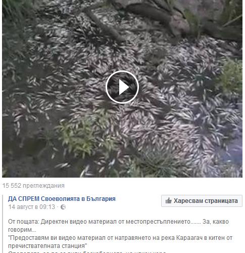 Ами ако природата е убила рибата в река Караагач?
