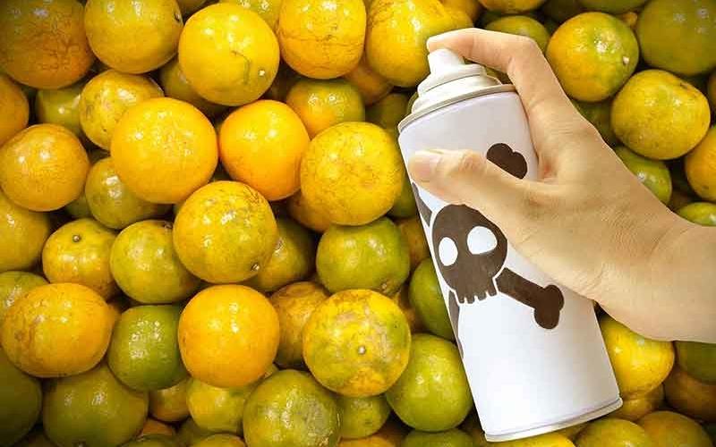 """Колко опасна е """"химията"""" в храната в сравнение с """"химията"""" в """"БИО"""" продуктите?"""