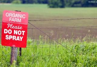 Биоземеделието е вредно за околната среда