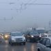 Нация от индивиди, загрижени за опазване на околната среда