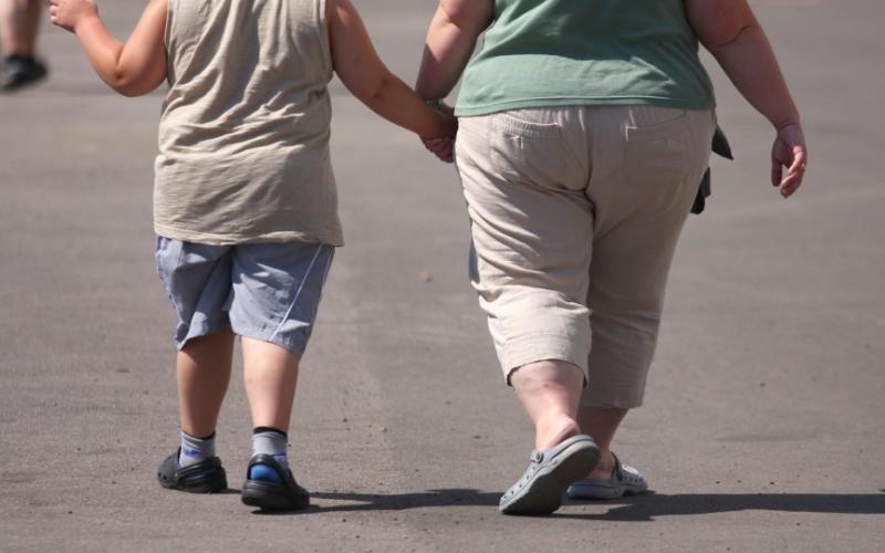 Наднорменото тегло е епидемия, която се причинява от бедността