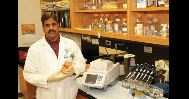 """Откриха 20 фалшиви научни статии, които """"доказват"""", че алтернативната медицина лекува рак"""